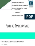 Periodo+embrionario