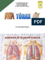 319267043 Anatomia de Pared Toracica Ppt