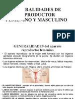 GENERALIDADES DE REPRODUCTOR FEMENINO Y MASCULINO