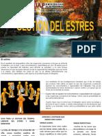 GESTION_DEL_ESTRES_Expo%5b1%5d