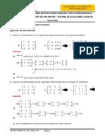 HT02SOL-Determinante y SEL (1)