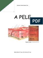 PELE-TUDO