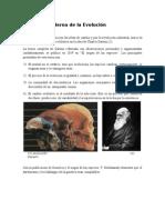 teoria evolutiva moderna