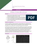 Guia de Laboratorio n.4 Estructuras Micoticas