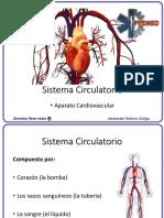 Anatomía y Fisiología del Corazón - EMT Capacitación PREMED