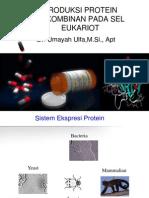 Sistem ekspresi pada eukariot