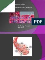 Cicatrizacion e Inflamacion 181212175714