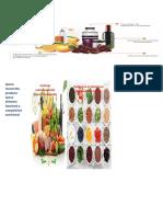 Alimentos tendencias e innovación