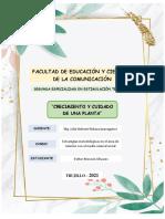 INFORME DE PLANTA Y ORGANIZAR INDIVIDUAL