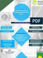 25-10-2017-educacaobasicanacontemporaneidade-novabncc-sandramariateseschi