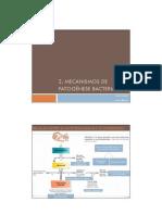 2. mecanismos patogenese bacteriana(1)