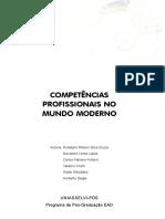 Competências Profissionais No Mundo Moderno