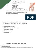 SUINO DOENÇAS DIGESTIVAS