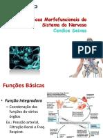 Características Morfofuncionais do Sistema do Nervoso