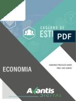 Economia.e Book