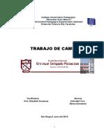 Trabajo de Campo Felicidad Toro y Elies Sarmiento Iutepal