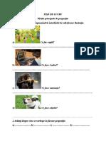 partile_propozitiit