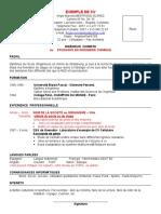 Exemple CV en Francais