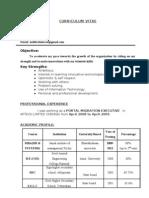 Curriculum Vitae(2)