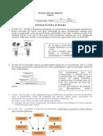 Atividade Periodica 1 ano 1 quadrimestre Cadeia alimentar Fotossintese e fluxo de energia