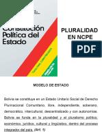 3 La pluralidad en la NCPE - 2008