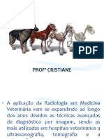 Radiologia Veterinaria - Prof. Cristiane
