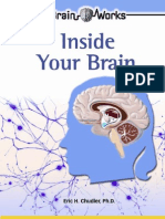 Inside_Your_Brain