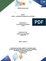Analisis de Informes Individuales_Diana Fernandez