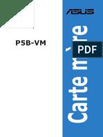 manuel carte mere p5b-v