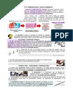 ATIVIDADE DE FÍSICA 2 ANO - PROPPAGAÇÃO DE CALOR
