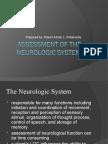 Assessment of the neurologic system