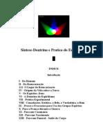 leon-denis-sintese-doutrina-e-pratica-do-espiritismo