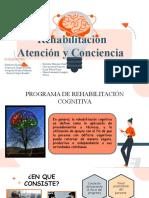 Rehabilitacion Conciencia COMPLETO