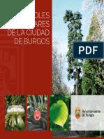 arboles-singulares-de-la-ciudad-de-burgos-publicacion-divulgativa-web