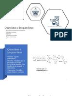 3.3.1-Quinolinas e isoquinolinas