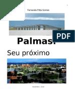 Guia Palmas final