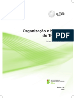 06 Organizacao e Normas Do Trabalho