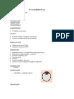 Resumen Embriología