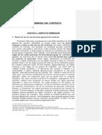 nuevo_teoria_general_del_contrato
