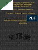 nervnaya_sistema_cheloveka_a