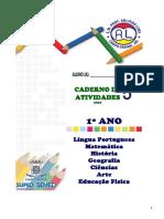 Ap5 1ano Arlindo Lima