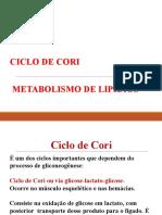 Ciclo de Cori e Metabolismo Dos Lipídios 2018-1