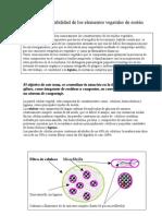 Biodegradabilidad_de_los_elementos_vegetales_de_sosten