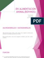 MINERALES EN ALIMENTACION ANIMAL(BOVINOS)