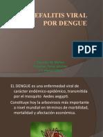 Encefalitis viral por dengue