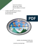 Medios de Investigación, Convicción o de Prueba en el Proceso Penal