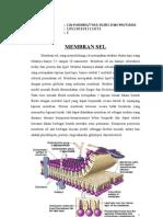 membran structure