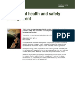 HSE HSG 065 Successful health and safety management 2nd Edition