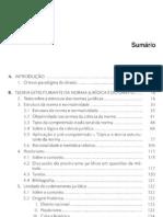 Novo Paradigma Direito Introdução 2.ed