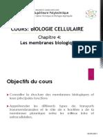 Les membranes biologiques  -  Réparation